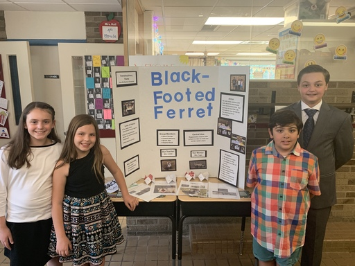 Exhibition: A Celebration of Learning at Conant Elementary