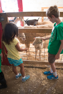 Summer Camps at Bowers Farm