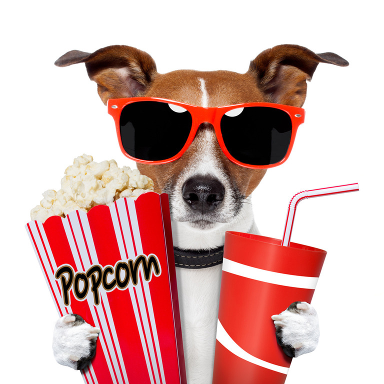 PTO FUNDRAISER: AN AFTERNOON AT THE MOVIES - MAY 26