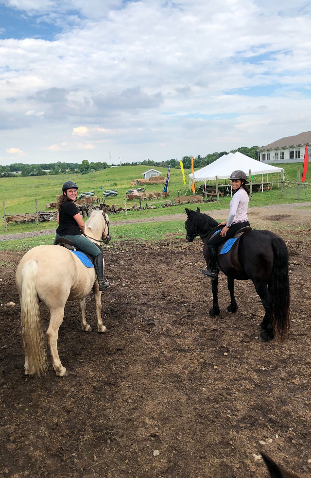 New Community Horse Program, by Friends of Bowers Farm