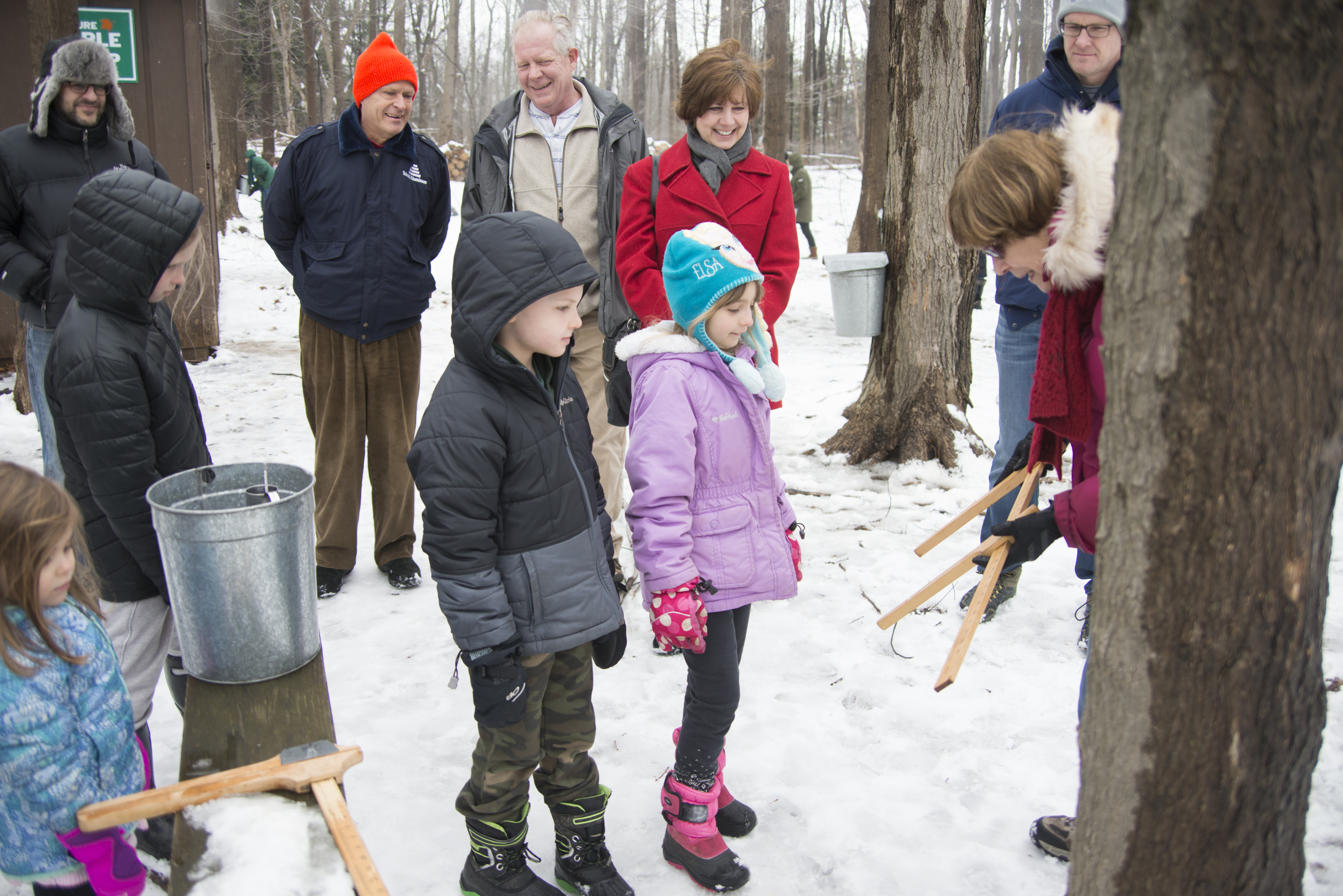 Maple Tapping Group