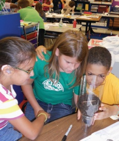 Students Learning about Sustainability at Elementary School in Michigan